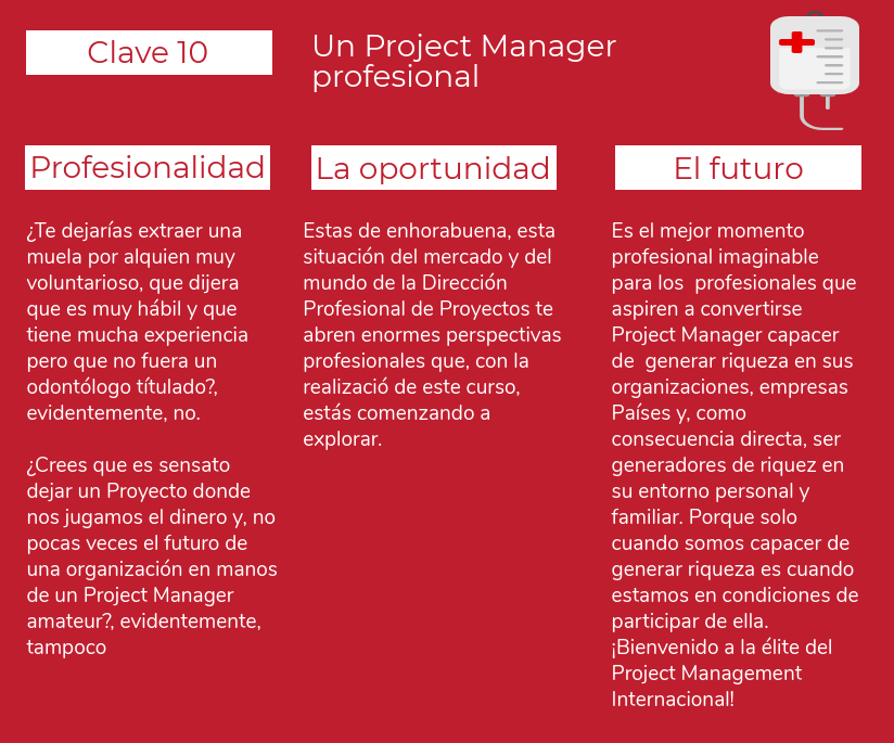Un Project Manager profesional